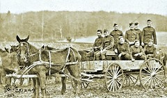 Mules 'Tom and Jerry' who had served in Mexico and for the full war in France, last ride with the 5th Field Artillery, Hundsdorf, Germany 1-20-19 NARA111-SC-51249 (over 16,000,000 views Thanks) Tags: horses mules artillery ww1 worldwari germany 1919 usarmyphotos usarmy