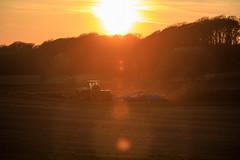 Mårten_Svensson_2U9A2715 (Bad-Duck) Tags: kullen vår claas krapperup kultivator lemken traktor årstid