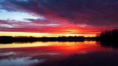Banister Lake Sunrise IMG_2726 (Jennz World) Tags: ©jennifermlivick sunrise bannisterlake ayr ontario canada