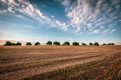 After the Harvest (Sebastian Witkin) Tags: lanscape sunset travel nature fields israel crops harvest clouds