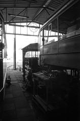 Film # 941 - 4 (Sven Kaschmir) Tags: 35mm 35mmfilme analog chemie filme foma fomapan100 hc110 kb940 kameras leicam6 leica m6 fomapan 100 163 10 min 20 grad