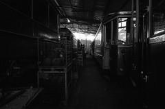 Film # 941 - 6 (Sven Kaschmir) Tags: 35mm 35mmfilme analog chemie filme foma fomapan100 hc110 kb940 kameras leicam6 leica m6 fomapan 100 163 10 min 20 grad