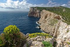 Capo Caccia (Tjaldur66) Tags: sea seashore italy sardinia travel outdoor spring mediterranean cape cliffs rocks clouds capocaccia alghero