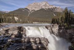 WP 1 A3 (Bay and Basin Camera Club) Tags: athabascafalls canada jaspernationalpark
