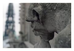 (Jordane Prestrot) Tags: ♌ jordaneprestrot paris notredamedeparis architecture arquitectura film argentique analog película filmisnotdead gargouille gargoyle gárgola