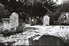 Cemetery (goodfella2459) Tags: nikonf4 afnikkor24mmf28dlens fujifilmneopanacros100 35mm blackandwhite film analog cemetery history hampstead london graves bwfp