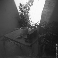 Holga-Acros-03-05.jpg (Mauricio Miret) Tags: holga acros100 ilfosol silverscan epsonv600 bw film blackandwhite