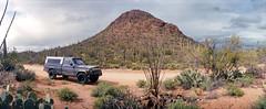 Saguaro National Park, AZ (The 69th Dimension) Tags: film filmphotography sonoran desert saguaronationalpark nationalpark southwest arizona tucson cactus widelux panorama 35mm analog jeep