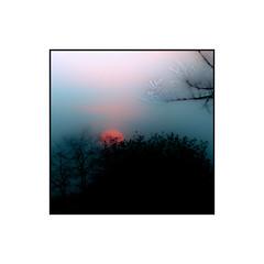 SDIM6029 (2) (Bailey2168) Tags: borderfx surrey walton thames sigma sd15 foveon m42 manual lens pentacon 200 200mm f4 sunset subtle