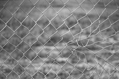 Getting Twisted (belleshaw) Tags: blackandwhite chainlink fence mesh obsession damage bent pattern metal detail texture walkingthedog