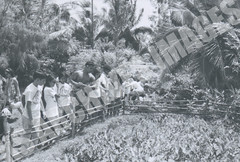 EXP69-147-5-2-6869 (Kamehameha Schools Archives) Tags: kamehameha archvies ks ksg ksb oahu kapalama luryier pop diamond 1969 1968