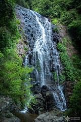 Tistania Falls (Dreamtime Nature Photography) Tags: waterfalls falls water jungle rainforest landscape canon dreamtimenaturephotography dorrigonationalpark nsw newsouthwales australia tistaniafalls