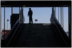 _CJ70446 (Walker Evans is my Hero) Tags: nikonz7 statenislandferry nyc newyork zeiss apo 135mm milvus z7