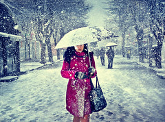 Snow Kissed (Day&Fir) Tags: snow winter snowflakes girl street cold girlwithumbrella storm snowtime chilly largestsnowflakes white fallingsnow umbrella urbanscene dark nikšić crnagora montenegro