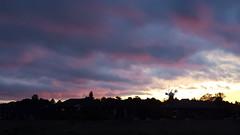 Holgate Windmill.  York.