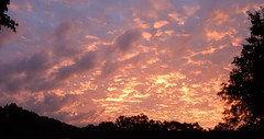 Clouds framed by tree (Martin LaBar) Tags: southcarolina pickenscounty sunrise clouds trees horizon light