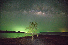 Koh Mak Island - Milky way over the mangrove tree. (baddoguy) Tags: above beach beauty in nature coastal feature coastline color image copy space dark dreamlike electric light famous place fisherman fishing boat green heaven horizontal island landscape scenery loneliness long exposure looking up low angle view mangrove tree midnight milky way natural phenomenon night no people outdoors pacific ocean photography sea seascape single object sky solitude star tee thailand trat province travel destinations unusual