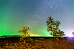 Koh Mak Island - Star trails and colorful night sky over the mangrove trees. (baddoguy) Tags: bright color image contrasts copy space dramatic sky electric light famous place friendship green horizon over water horizontal island landscape scenery effect long exposure mangrove tree night no people photography sea star trail tee thailand togetherness trat province travel destinations two objects unusual angle variation vibrant wallpaper decor