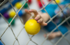 A child trying to catch a ball through a net (Ivan Radic) Tags: dslr hand interior kind kleinkind nikon nikond610 sigma35mmf14art sigmaart yellow active arm balls bithdayparty boy care cheerful childhood cute ecstatic excited finger fun greifen hands happiness happy health indoor kid lifestyle lovely network one parenthood playful playing playroom reachingfor reflex schnappen smile smiling son toddler toy young ivanradic