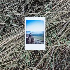 17.100 (tara on the wander) Tags: image17100 instantfilm instaxmini9 tarainstapix 100xthe2019edition 100x2019