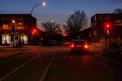 The red hour / Entre chien et loup (Jacques Lebleu) Tags: pétales arbres rues bixi bicyclettes chien piétons automobiles soir crépuscule
