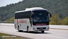 pk (burahaneldemir2) Tags: neoplan bus busspotter manbus man mbbus mercedes megaliner ph photography nikon magazinulaşım like follow