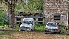 Renault R4 VS Citroen VISA (ostplp) Tags: bullet voiture car urbex exploration vintage forgotten citroen renault visa r4