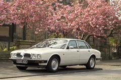 Jaguar XJ6 (MikeOB64) Tags: classic british car saloon jaguar xj6 wedding