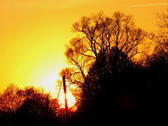 IMG_8848 (kennethkonica) Tags: dawn sun color canonpowershot canon indianapolis indiana indy beechgroveindiana light hoosier random usa midwest america morning sky creative artistic mood atmosphere sunset yellow trees