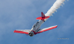 Aeroshell Dive (tclaud2002) Tags: plane airplane stuntplane aircraft aviation prop propeller dive fly flyingflight contrail smoke bluesky clouds airshow stuartairshow 2018stuartairshow florida usa