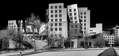 D7K_0340-Pano: The Stata Center @ MIT (Colin McIntosh) Tags: 2019 boston mit stata ngc nikon d7100 infrared kolari 720nm 24mm f28nc manual focus