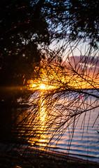 No tittle (zeethisara) Tags: noosa sun rise