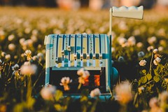 Check machine (yusuf.ronco) Tags: colorful tones lush warm productphotography bokeh flowers antique goldenhour nikond610 fx d610 85mm nikkor85mmf18g