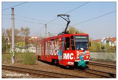 Tram Frankfurt (O) - 2019-16 (olherfoto) Tags: bahn tram tramcar tramway strasenbahn villamos frankfurtoder tatra kt4d