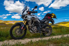 IMG_0150 (jde95tln) Tags: carrizo plain national monument honda africa twin crf1000l dct 2016 2019 superbloom super bloom wildflowers clouds