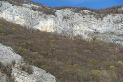 Hike to Montagne de la Mandallaz & Lac de la Balme de Sillingy (*_*) Tags: 2019 printemps spring savoie afternoon march annecy 74 hautesavoie france europe sunny hiking mountain montagne nature walk marche jura mandallaz randonnee sillingy cliff rock rocher falaise tetedelamandallaz