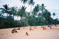 beachin' (dancearoundaworldburningdown) Tags: 35mm olympusmjuii film
