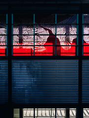 2019-04-18-082638 (Schmidtze) Tags: architektur bahnhof berlin berlinpankow bornholmerstrase building farbe fenster gebäude olympusem1markii olympusm12100mmf40 prenzlauerberg railwaystation sbahnhof sbahnhofbornholmerstrase stadt menschenleer deutschland