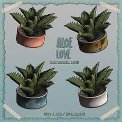 crate has Aloe Love for Saturday Sale (crate.) Tags: aloe plant decor sale
