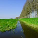 Cultivated Landscape thumbnail