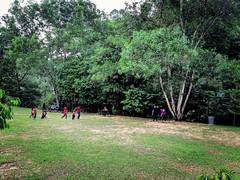 Kota Damansara Community Forest Reserve Jalan Merbah 10/1, Seksyen 10 Kota Damansara, 47810 Petaling Jaya, Selangor https://maps.app.goo.gl/WE9HLyydUBuuF1fV6  https://foursquare.com/soonlung81  https://maps.app.goo.gl/CPWsi  https://www.instagram.com/s/aG (soonlung81) Tags: naturel reizen semester 여행 viaggio naturale malaysia vakantie holiday asian 馬來西亞 การเดินทาง طبيعة природа natuurlijk 휴일 trip natuur fiesta vacances سفر 自然 ธรรมชาติ 亞洲 путешествие natural nature alam traveling 度假 旅行 大自然 voyage عطلة праздник vacanza natürlich resa วันหยุด asia ホリデー 자연 viaje reise urlaub travel