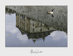 Chateau Bomal-sur-Ourthe (Marian Smeets) Tags: chateau chateaubomalsurourthe kasteel reflectie reflection ardennen belgischluxemburg nikond750 mariansmeets 2019 eend duck