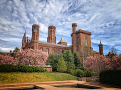 Springtime at the Smithsonian Castle in Washington, DC (` Toshio ') Tags: toshio washingtondc washington dc districtofcolumbia magnoliatrees magnolia tree castle smithsonian bloom flowers garden sky smithsoniancastle iphone spring