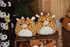 DSC_9356 (earthdog) Tags: 2019 nikon d5600 nikond5600 18300mmf3563 needstags needstitle themepark amusementpark greatamerica santaclara shopping shop store animal stuffedanimal softie