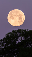 Good Friday Full Moon (sethjschubert) Tags: easter sky moon astronomy pink lunar