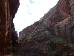 P1000555 (odetojoy24) Tags: zion utah angels landing hiking