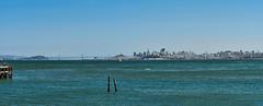 DSC06376_stitch (wNG555) Tags: 2015 california sanfrancisco marincounty marinheadlands goldengatebridge goldengatenationalrecreationarea bakerbeach stinsonbeach muirbeachoverlook hawkhill a6000