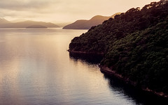 Queen Charlotte Sound (Bill Thoo) Tags: queencharlottesound picton marlborough newzealand southisland cruise cruiseships cruising travel landscape water sound seascape scenic dawn light forest film analog analogue filmphotography filmcamera analogphotography analoguephotography 35mm 35mmfilm 35mmfilmcamera 35mmfilmphotography olympus om1 olympusom1 fuijifilm velvia velvia100 fuijifilmvelvia