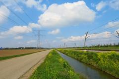 Lines! (arjenvanveldhuisen) Tags: vakburg betuwelijn nederland lines spoor elektriciteitsmast a15 groen