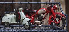Toys (JLM62380) Tags: moto scooter motorcycle miniature jouet toy shop boutique pluie rain